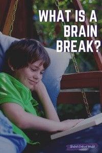 what is a brain break